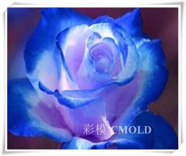 http://diamantengoblen.com/wp-content/uploads/2018/02/СИНЬО-СИЯНИЕ-№-Ц55.jpg